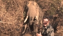 https://media-oc.akamaized.net/outdoorchannel/42/406/TracksAA_ElephantStalk_125x71_2191485331_125x71.jpg